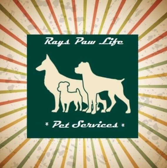 Rays paw life pet boarding image