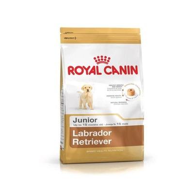 Royal Canin Labrador Retriever Junior Food For Puppies (12 Kgs) image