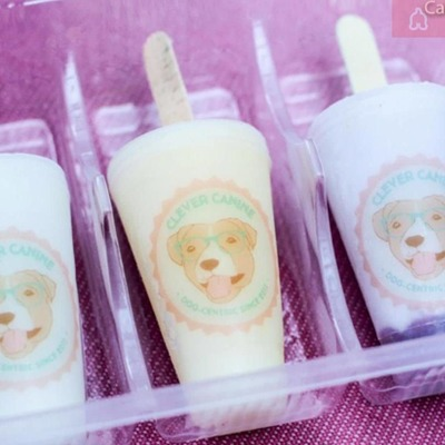 ASSORTED FLAVOURS FROZEN POPSICLE PACK OF 5 image