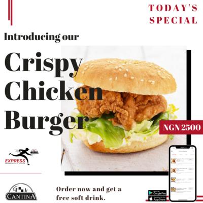 NEW!! Crispy Chicken Burger ~ 45 Min image